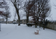 Parc-Charny_20-01-2013_P1000178